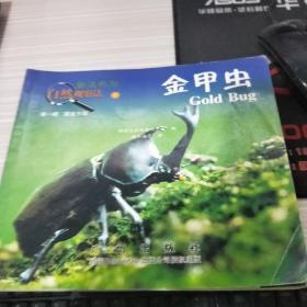 繪本  金甲蟲