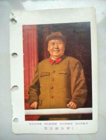 伟大的导师,伟大的领袖,伟大的统帅,伟大的舵手毛主席万岁!