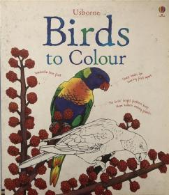 骞宠 Birds To Colour 楦熺殑棰滆壊