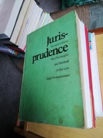 Jurisprudence:The Philosophy and Method of the Law【法理学:法律哲学与法律方法】