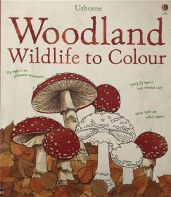 骞宠 Woodland Wildlife To Colour妫灄閲庣敓鍔ㄧ墿鐨勯鑹�