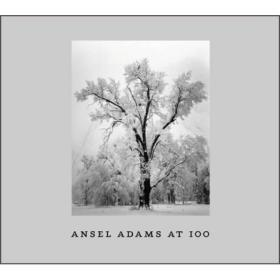 Ansel Adams at 100
