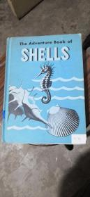 The Adventure Book of SHELLS