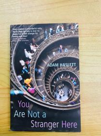 You Are Not A Stranger Here/Adam Haslett/Vintage Books, 2003