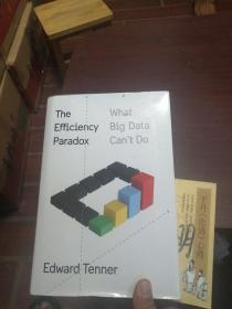 The Efficiency Paradox: What Big Data Cant Do