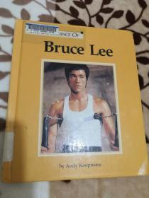 The Importance of: Bruce Lee 李小龙的意义英文书