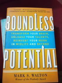 Boundless Potential: Transform Your Brain, Unleash Your Talents, Reinvent Your Work in Midlife an...