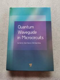 Quantum Waveguide in Microcircuits(详情请阅图