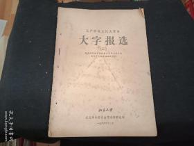 北京大学大字报选2   李雪峰专辑