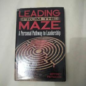 Leading from the Maze: A Personal Pathway to Leadership