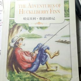 哈克贝利·费恩历险记:THE ADVENTURES OF HUCKLEBERRY FINN(英文