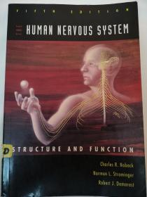 The Human Nervous System: Structure and Function