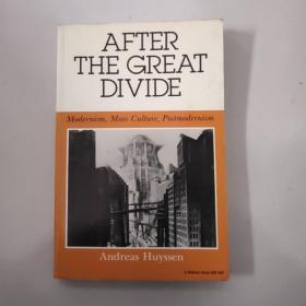 after the great divide: modernism, mass culture, postmodernism【英文原版小16开,如图实物图】