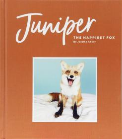 Juniper:The Happiest Fox