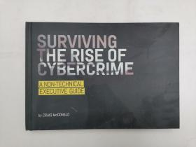Surviving the Rise of Cybercrime