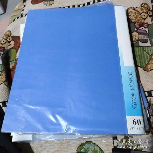 A4纸12寸60面活页塑料套袋资料册(可放置活页A4纸120张) 全新塑封未拆