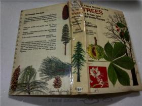 原版英法德意等外文 A FIELD GUIDE TO THE Trees of Britain   32开硬精装