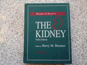 Brenner & Rectors: The Kidney (Fifth Edition) Volume 1     精装本    馆藏