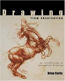 Drawing from Observation:An Introduction to Perceptual Drawing