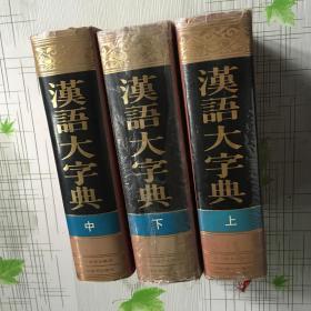 汉语大字典 上中下
