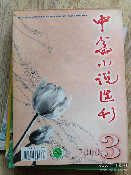 中篇小说选刊 2000-3