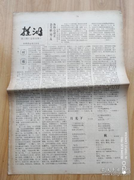桂 湖   第三期(总第五期)