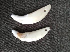 原天然牙质两颗挂件