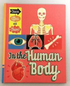 原版英文 儿童益智绘本 In The Human Body 精装