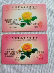天津商业电子消费卡两枚