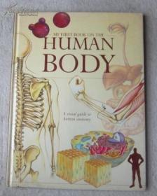 英文原版书 My First Book on the Human Body: A Visual Guide to Human Anatomy