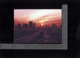 2009年济南市摄影艺术作品(五)10张