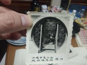 60年代上海总工会杭州休养所风景照-9