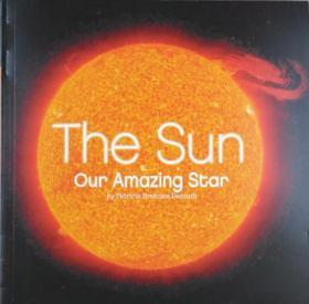 The Sun Our Amazing Star