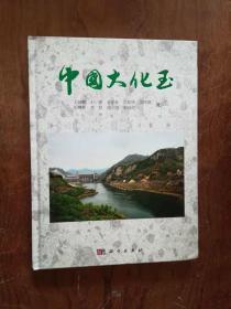 【中國大化玉  精裝