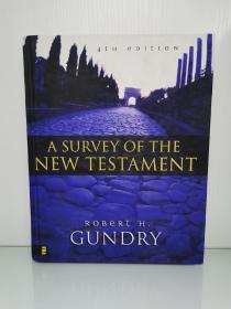 Survey of the New Testament by Robert H. Gundry 英文原版书
