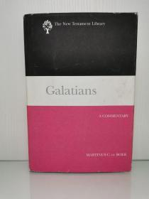 Galatians : A Commentary (The New Testament Library) by Martinus C. De Boer 英文原版书