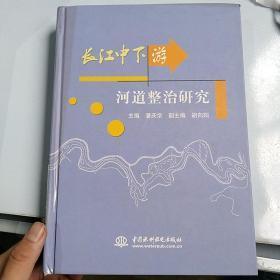 長江中下游河道整治研究