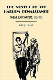 The Novels of the Harlem Renaissance: Twelve Black Writers, 1923–1933