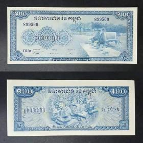 Cambodia 100 Riel Banknote 1972 Young Yellow Spots Blue Buffalo Edition Foreign Coins