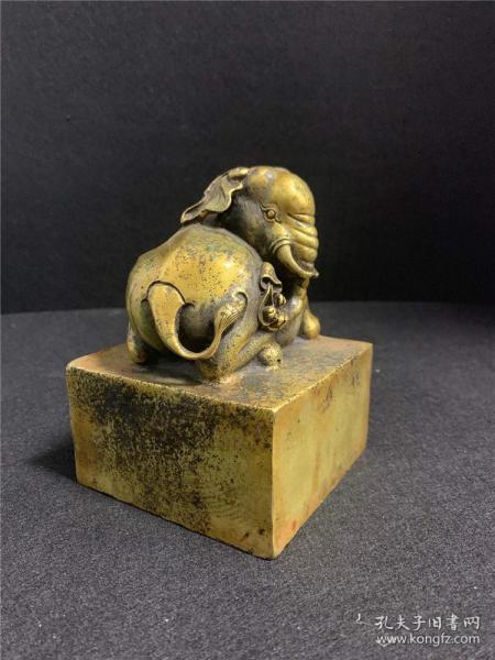Brass elephant seal