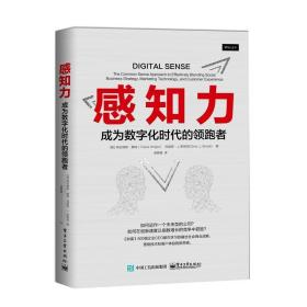 感知力:成为数字化时代的领跑者:the common sense approach to effectively blending social business strategy, marketing technology, and customer exprience