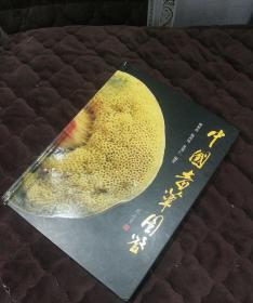 中國毒蕈圖鑒/毒蘑菇識別與中毒防治/科學自然科普讀物