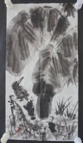 ●d13  著名畫家、花鳥師承李苦禪大師、中國美術家協會北京分會會員—錢衛國  花鳥國畫作品一幅 ,紙本軟片,尺寸約50*26厘米!