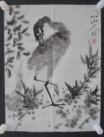 ●d19  著名畫家、花鳥師承李苦禪大師、中國美術家協會北京分會會員—錢衛國  花鳥國畫作品一幅 ,紙本軟片,尺寸約45*34厘米!