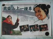 二开经典电影海报:昆仑山上一棵草