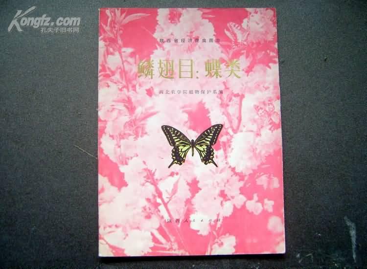 陕西省经济昆虫图志/鳞翅目:蝶类--原版书绝非复印本--16开/有42页355幅彩图