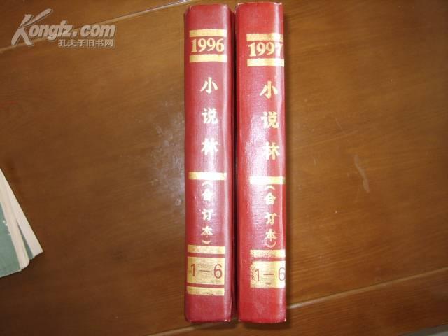 小说林(合订本)1996.1997