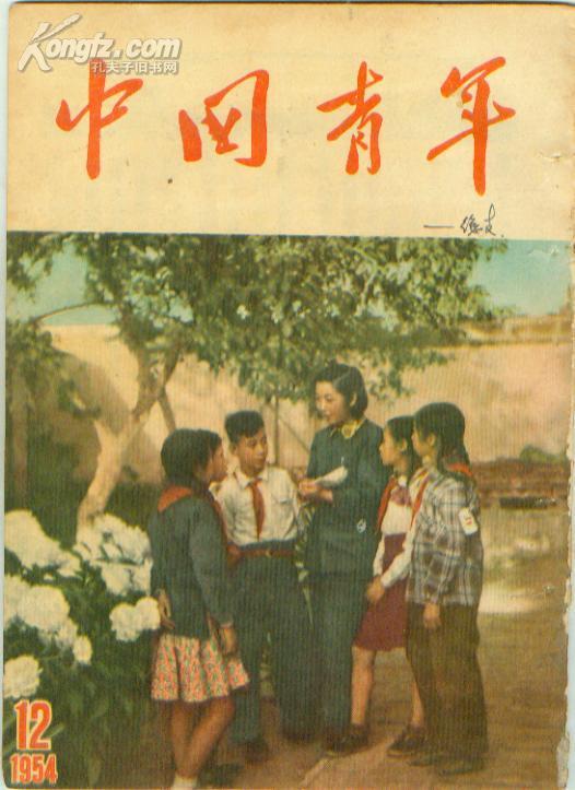 中国青年杂志社_网上书店买书_网购中国青年