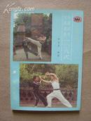 中国武术实战技法108式(陕西红拳名宿田克惠编著)