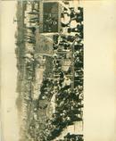 新华社展览图片[50年代欢庆节日] 宽 25cm长16cm